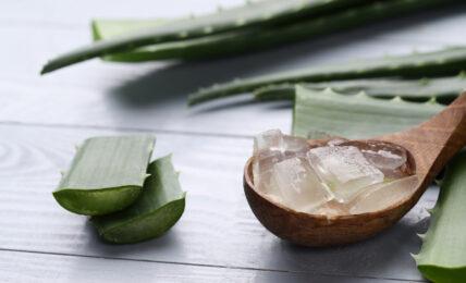 gel de aloe vera para piel y cabello